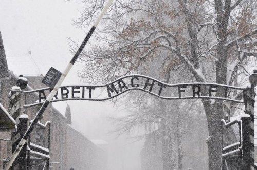 Auschwitz  Photo Paweł Sawicki
